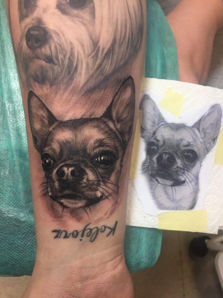 chihuahua tatuaż